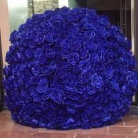 Букет 201 синяя роза с упаковкой R925