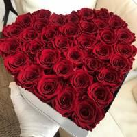 Сердце 31 красная крупная роза R93